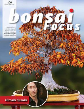 Bonsai Focus DE