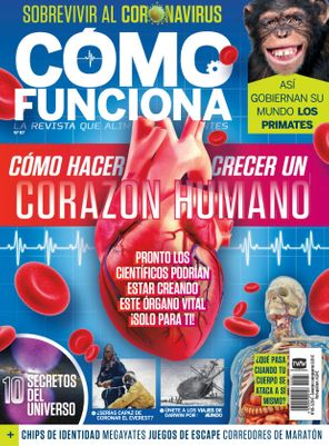 COMO FUNCIONA Spain