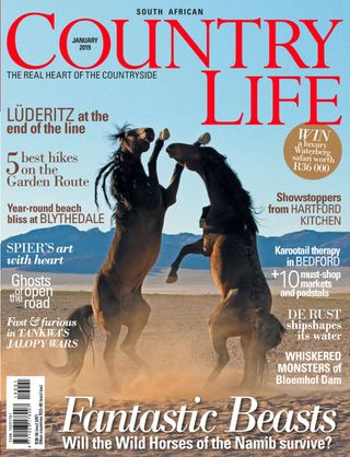 Sa Country Life Magazine January 2019 Issue Get Your Digital Copy