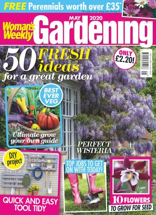 Woman S Weekly Living Series Magazine Get Your Digital Subscription