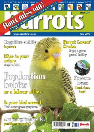 Parrots magazine Magazine July 2018 issue – Get your digital copy