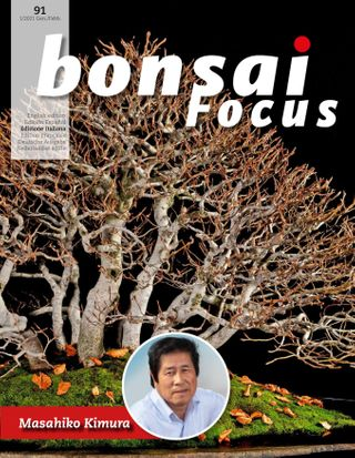 Bonsai Focus It Magazine Get Your Digital Subscription